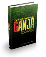 Ganja:The Jamaican and Global Connection